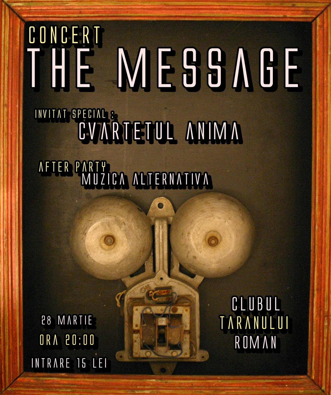 Trupa-The-Message-_Cvartet-Anima.JPG